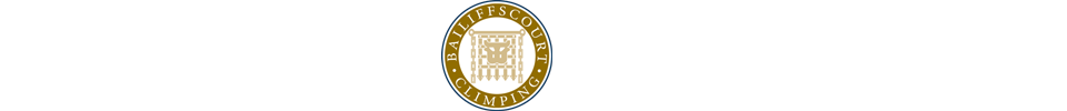 Bailiffscourt Hotel and Spa logo