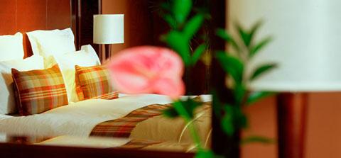bedroom_480