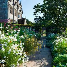 garden-mh