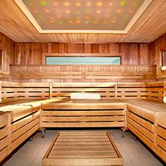 bio-sauna-2015