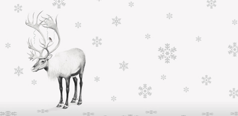php-xmas-highlight-17
