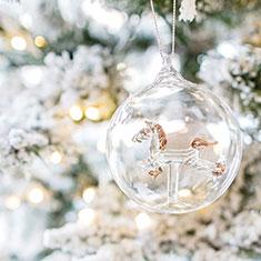 mini-highlight-christmas