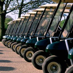 mini_golf_carts